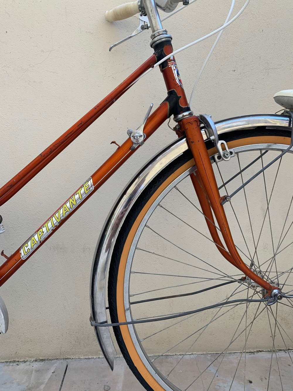 Vélo de ville Captivante