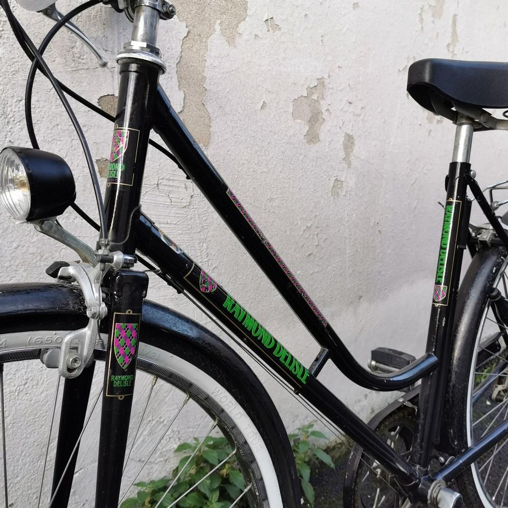 Vélo Raymond Delisle